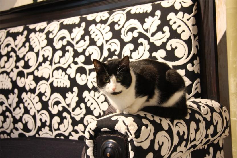 Mein Sofa Hersteller : tw mein sofa themenwoche galerie ~ Watch28wear.com Haus und Dekorationen