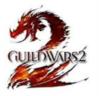 """Bild zur News """"Guild Wars 2 Beta für den Mac erschienen"""""""