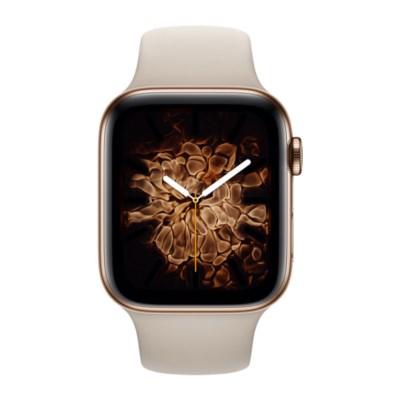 Erstes Foto der Apple Watch Series 5 aufgetaucht?